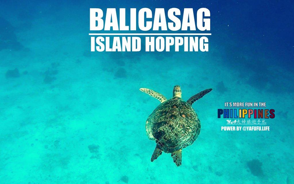 Bohol-Balicasag-Virgin-island-hopping-Snorkeling00