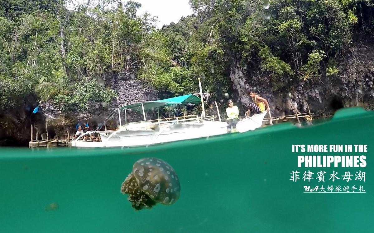 Sohoton-Jellyfish