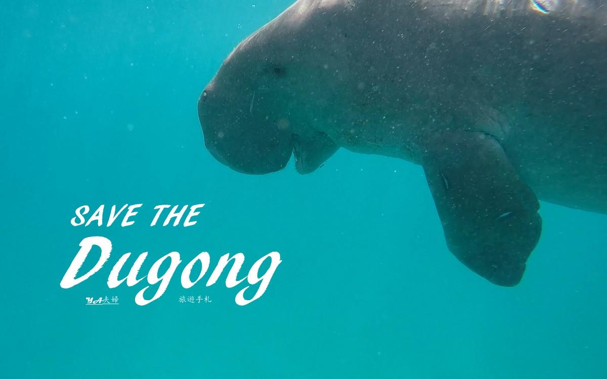 Coron-dugong-01