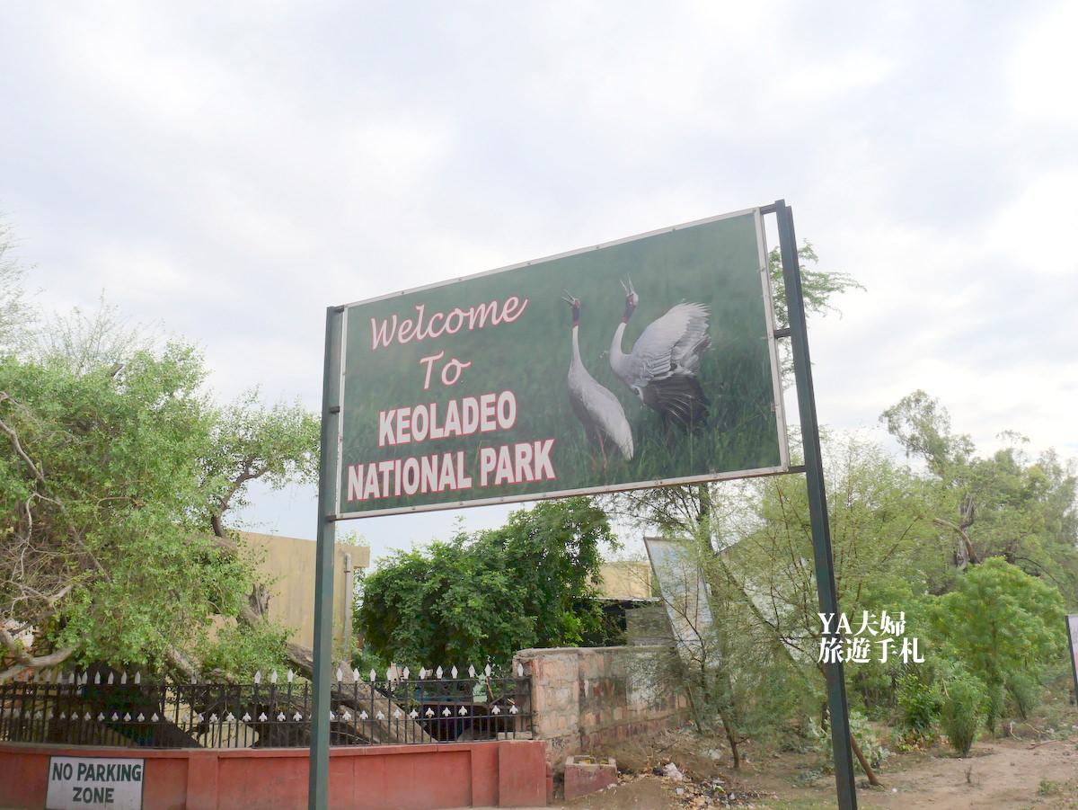 keoladeo-national-park-01