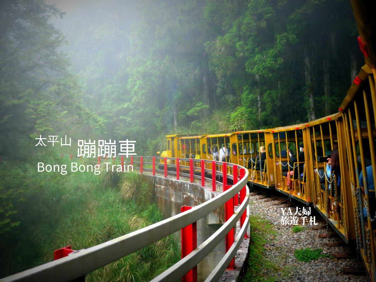 bong-bong-train-00